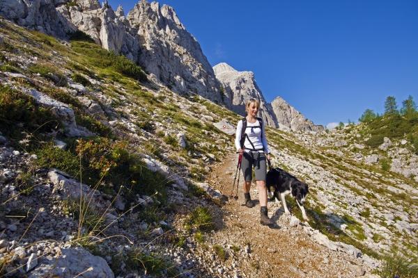 turystyka piesza z psem