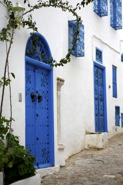 tunezja sidi bou said typowe niebieskie