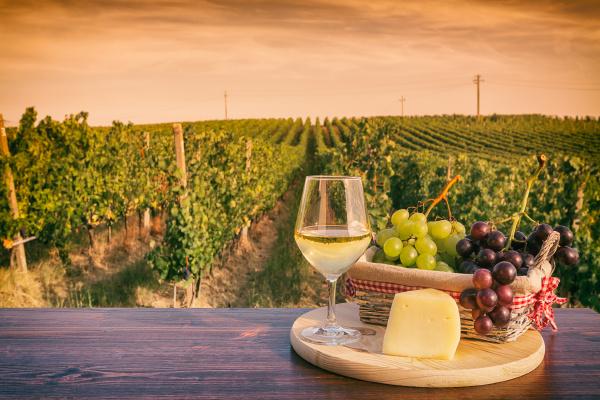 kieliszek bialego wina przed winnica o