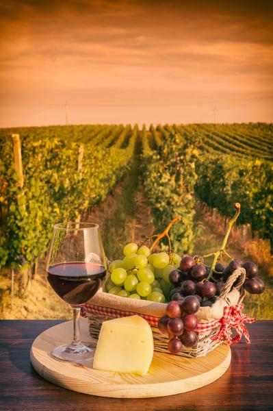kieliszek czerwonego wina przed winnica o