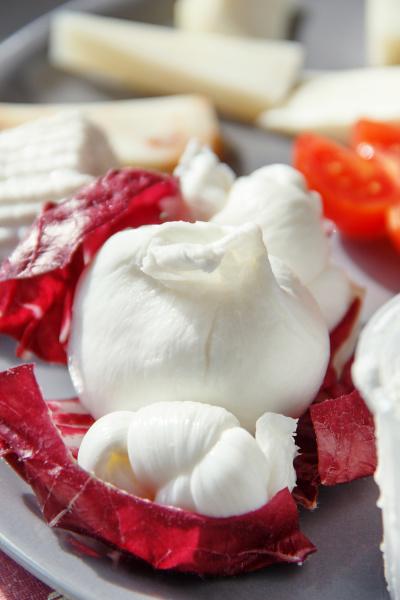 south, italian, fresh, made, cheese, plate - 28215561