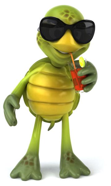 zabawny, żółw - 28218390