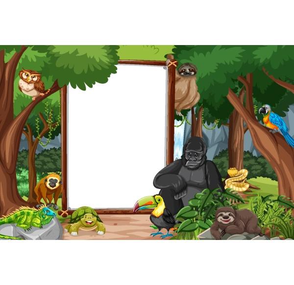 pusty, baner, w, scenie, lasu, deszczowego - 30231045