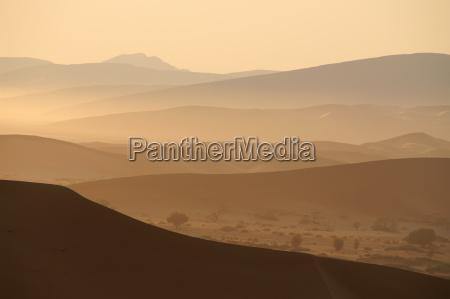 pustynny poranek