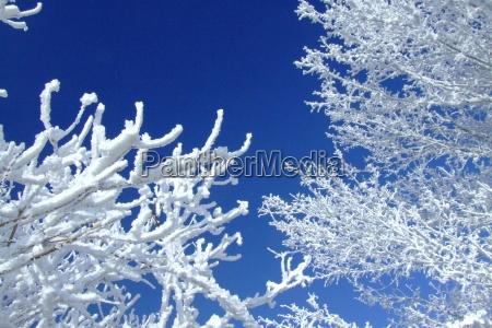 kolory zimowe