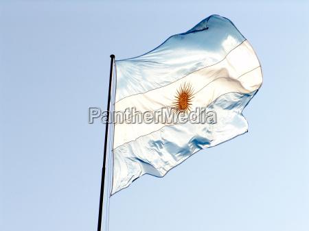 niebieski biel pruinose caucasian euro kaukaskiej