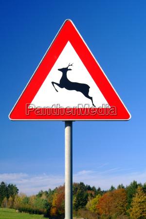 znak drogowy jeleni krzyzowania