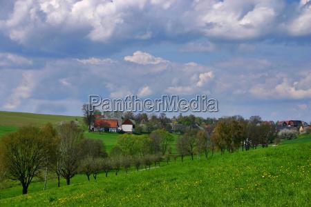 domy obszarow wiejskich obszar wiejski drzewo