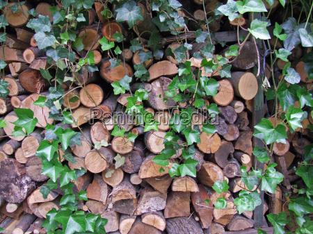drzewo paliwo kominek kuchenka drewno opalowe