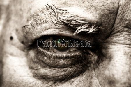 detal oko narzadow pora czas wyobcowanie