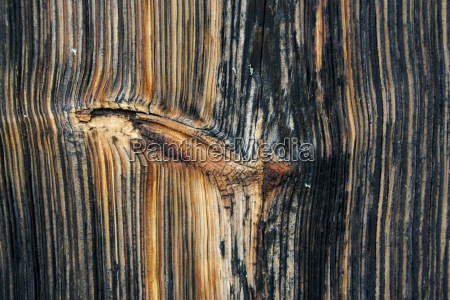 drewno drewna panel miec
