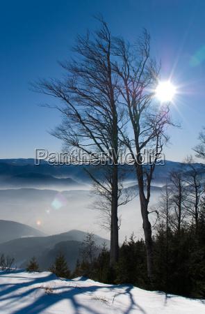 gory alpy weitsicht dolna austria