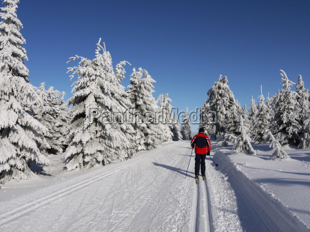 narciarstwo biegowe