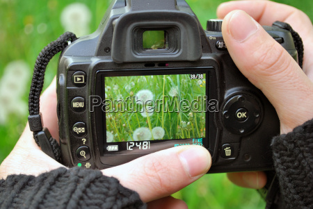 natura fotograf