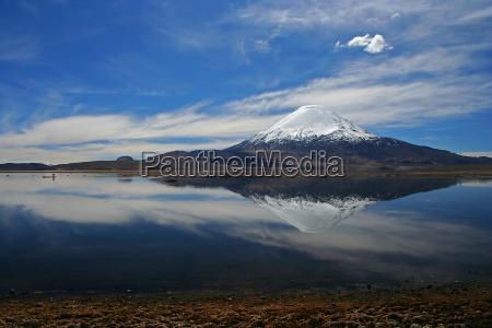chile wulkan parinacota lago chungara lauca