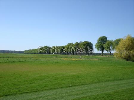 golf mecklenburgvorpommern kaschow golfclub strelasund golfpark