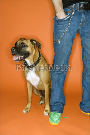 young man with boxer dog