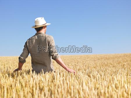 man, in, wheat, field - 2837711