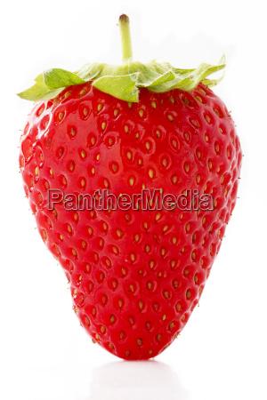 makro jagodowe