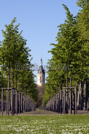 tower from schwerin castle through trees