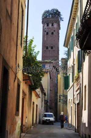 italy tuscany lucca torre guinigi