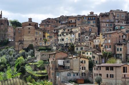 siena tuscany altstadt