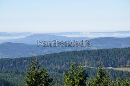 panorama turyngii las