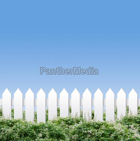 biale ploty i blekitne niebo