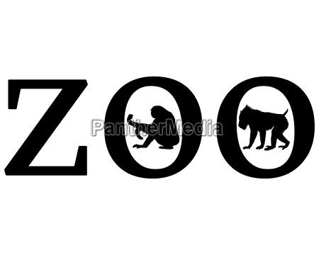 animais do jardim zoologico
