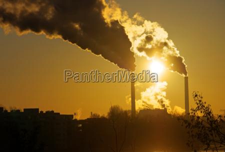palenie wedzone pali dym skrupuly przemysl