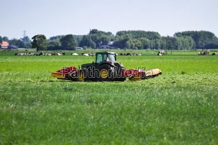 gospodarstwo rolnictwo architektura holandia niderlandy country
