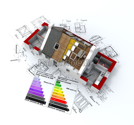 ecological house project