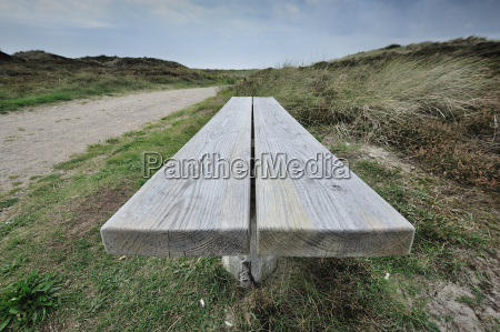 bench in the dunes at the