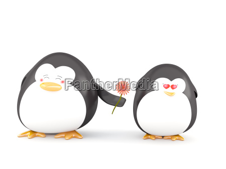pingwin w milosci
