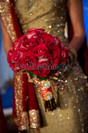 image of a beautiful indian brides