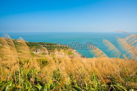 matsu juguang wyspa wysokiej trawie h