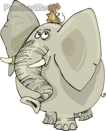 slon z myszka
