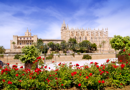 majorca cathedral and almudaina from red