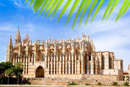 cathedral of majorca la seu