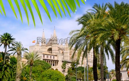 almudaina and cathedral of palma de