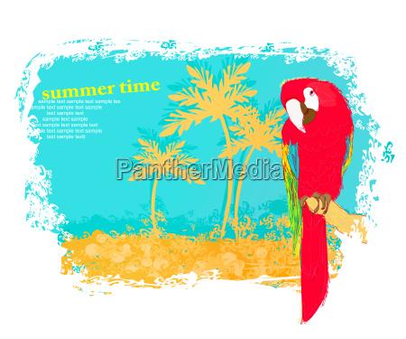 kolorowy ptak papuga siedzi na okon