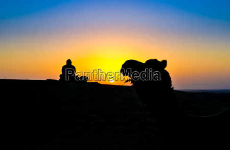 a woman and a camel at