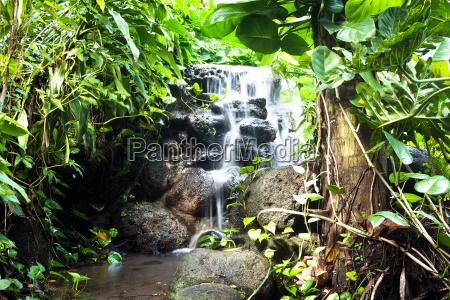 wodospad krajobraz natura zawod roslina