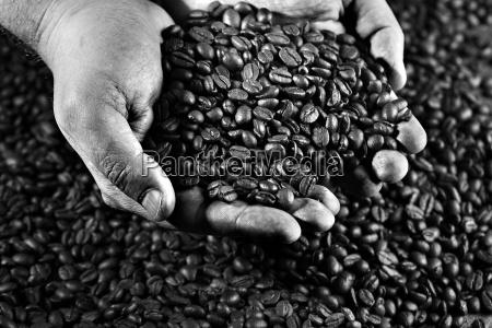 reka rece dlonie dlonie kawa kaffe