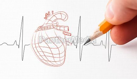 boceto de un corazon y una