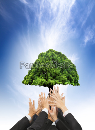hands of business people holding green