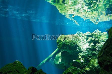 view on the underwater rocks