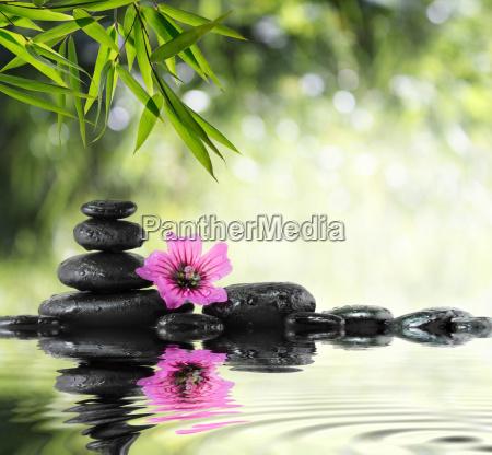 czarny kamien i hibiskusa z bambusa