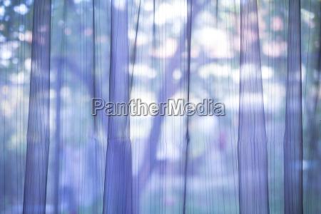 fioletowy przezroczysty tle kurtyny