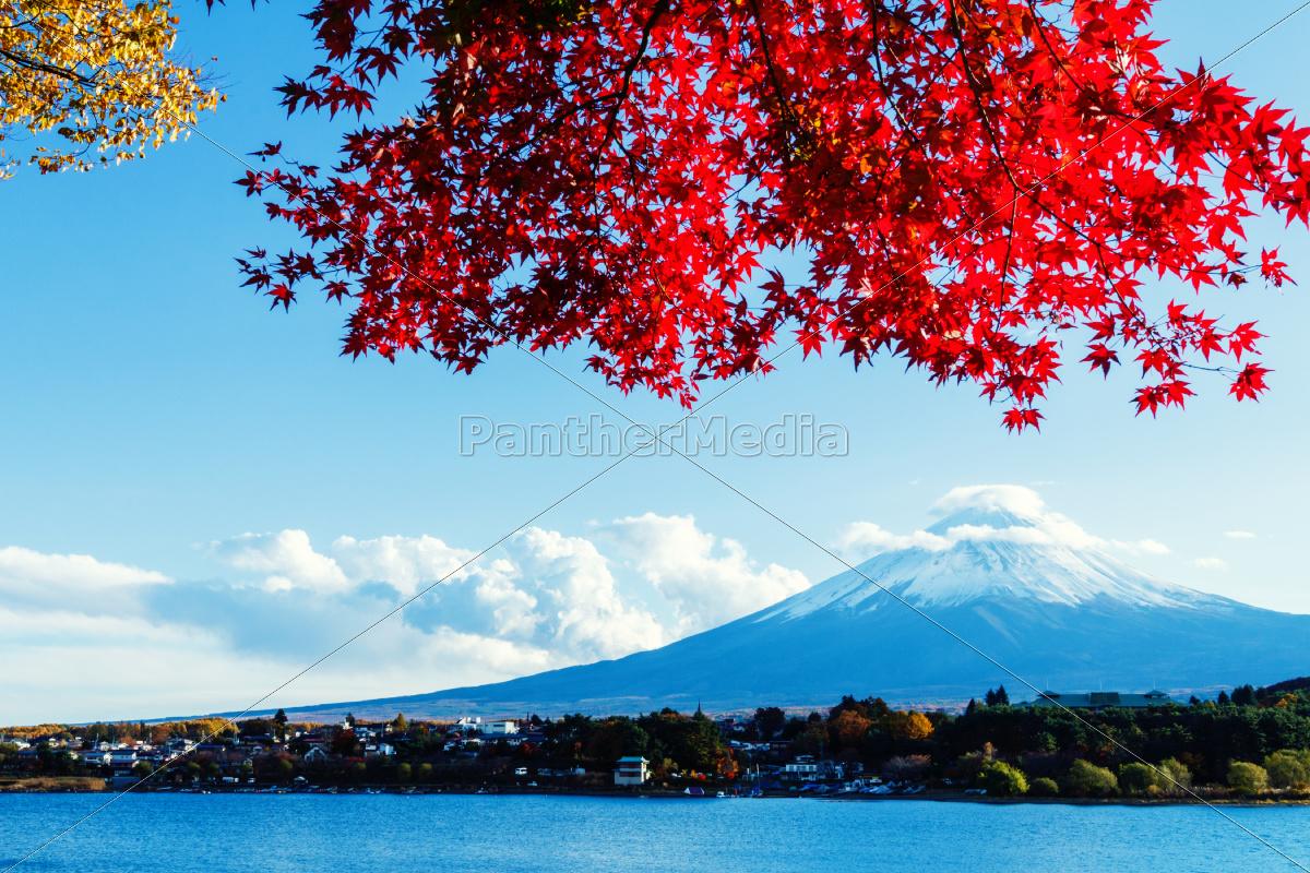 mt., fuji, jesienią - 10261301